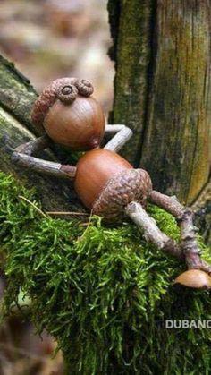 Diy Home Crafts, Wood Crafts, Fun Crafts, Crafts For Kids, Pine Cone Art, Pine Cone Crafts, Fairy Crafts, Garden Crafts, Acorn Crafts