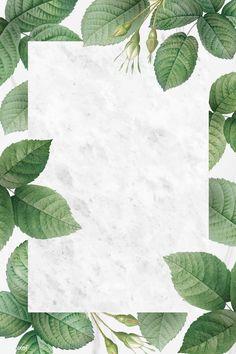 Pastel Background, Leaf Background, Background Patterns, Framed Wallpaper, Flower Wallpaper, Dark Backgrounds, Wallpaper Backgrounds, Powerpoint Background Design, Instagram Frame