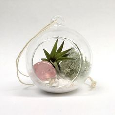 It's coming up soon folks! ( @jamesdarty take note )  15% off this Valentine's Rose Quartz air plant terrarium and all crystal terrariums in my shop for one week starting today! Link in bio