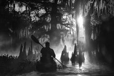 Overall winner - Travel Photographer of the Year 2015 - This image by Marsel van Oosten man kayaking amongst Giant Cypress on misty morning on one of the countless bayous of the Atchafalayan basin the largest US wetland located in Louisiana Photography Awards, Fine Art Photography, Nature Photography, Photography Tips, Street Photography, Cypress Swamp, Cypress Trees, Vietnam, Camera World