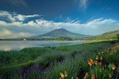 [Mt,Fuji from Lake Kawaguchiko] - 山梨・河口湖 - Yamanashi, Japan