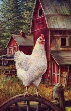Farm Animal Art for Sale Rooster Painting, Rooster Art, Rooster Decor, Tole Painting, Red Barn Painting, Painting Canvas, Canvas Art, Chicken Painting, Chicken Art