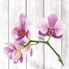 servetten, Single Orchid