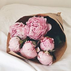 pink peonies leave them here