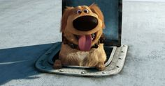 I got Dug! Quiz: Which Disney Pixar Dog Should You Adopt? Disney Up, Disney Dogs, Arte Disney, Disney Magic, Disney Time, Disney Stuff, Pixar Movies, Movie Characters, Disney Movies