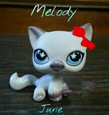 Melody June