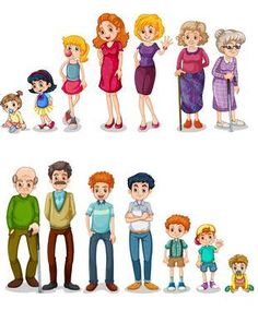 Images of Life Stages of Preschool People - Preschool Children Akctivitiys Kindergarten Crafts, Preschool Learning Activities, Preschool Classroom, Kids Learning, Human Life Cycle, Life Cycles, Kids Education, My Family, Illustration