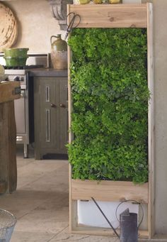 This living wall planter, large vertical garden is something I need to get in my house ASAP! Perfect for using fresh herbs and spices in your food!   the green head