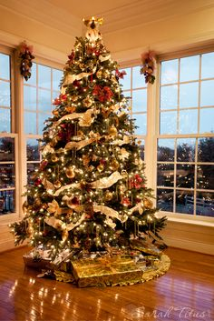 Beautiful holiday Christmas tree by window