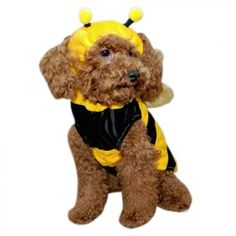 Bumble Bee Dog Costume One piece yellow and black bumble bee dog costume with gold wings.
