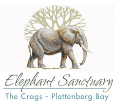 The Elephant Sanctuary, The Crags, Plettenberg Bay