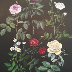 We may think we're familiar with the humble rose, but did you know that the original species only had five petals? Through cross-pollination roses have evolved over time, as documented in artist-in-residence Jane Kim's 'Man-made: An Evolution of Roses.'  Chat to Kim, aka @inkdwell, about the flora and fauna that are native (and not-so-native) to San Francisco in our working artist studio, Wednesdays-Sundays, through July 3rd.  #artistinresidence #SanFrancisco #florals #roses