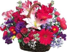 Basket for Mother & Baby    Price:  €55.72    Fresh flowers arrangements in a cane basket including Jerbera, Lilies, Roses, Carnations plus foliage Makes someone special day unforgettable