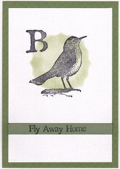 Birds van IBFS.