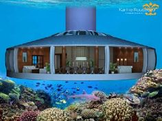 Underwater Dwellings: H2Ome and The Poseidon Resort, Figi. First sea floor residence................. Architecture Design, Cabinet D Architecture, Floating Architecture, Classical Architecture, Poseidon Resort, Underwater House, Underwater Bedroom, Underwater Photos, Underwater Photography