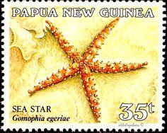 Papua New Guinea.  SEA STAR, GOMOPHIA EGERIAE. Scott 683  A156, Perf 14. Issued 1987 Sept 30. Lithogravure. 35t. /ldb.