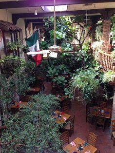 pancho's mexican restaurant manhattan beach - - Yahoo Image Search Results