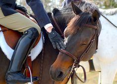 horseback riding love!