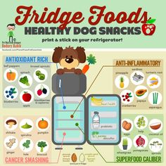 Tired of seeing infographs of foods your dog can't eat? Here is a nifty printable infograph of some awesome foods found in your refrigerator that they CAN eat! :D