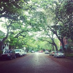 The drive into work this morning, Jones St #savannah #scad
