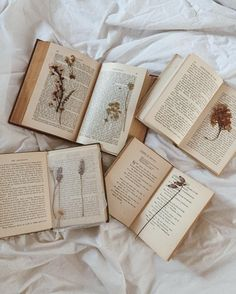 Vintage books and pressed flowers