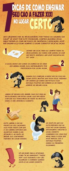 como-ensinar-cachorro-fazer-necessidades-no-lugar-certo-02-600x1475