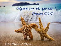 #Amor #Matrimonio #Unidad #Devocionalparamujeres #DiarioBiblico #Devocionales #Versiculos - #Bible - #Dios #DevocionalDiario #MujeresdeInfluencia #MujeresenlaPalabra #Amistad #Mujeres