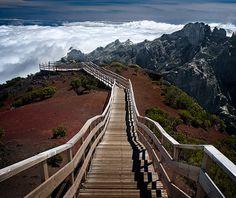 The way down to heaven. #madeira #secretmadeira
