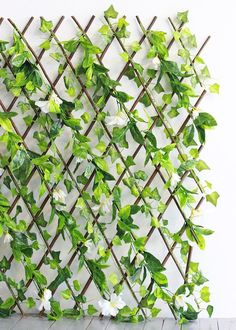 Expandable Lattice Fence with Ivy   Outdoor Home Decor   Afloral.com