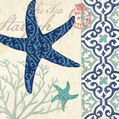 Sea Life - Starfish by Jennifer Brinley