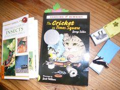 making a cricket in a matchbox