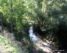 """#Córdoba - #Almedinilla - Río Caicena  Coordenadas GPS: 37º 26' 12"""" -4º 5' 6"""" / 37.436667, -4.085000  En esta localidad es característica la multitud de arroyos y fuentes y su río principal: el Caicena, que posee un caudal constante (principal afluente del Guadajoz) con saltos de agua espectaculares como el Salto del Caballo, cerca del Museo Histórico, y albergando una población bien conservada de fresnos, álamos negros, membrillos, etc."""