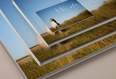 MyPublisher - Custom products and free proprietary design applications, including Photo Books, Photo Calendars, Photo Cards and Canvas Prints