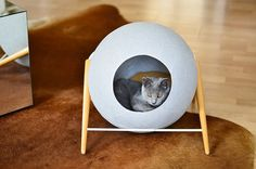 Classy furniture for discerning cat. Mobilier chic pour chat exigeant!