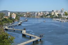 #local Brisbane Riverwalk Brisbane To New Farm | Must Do Brisbane Melbourne, Sydney, Brisbane River, Brisbane Cbd, Brisbane Australia, Picnic Spot, Picnic Area, Cairns, Tasmania