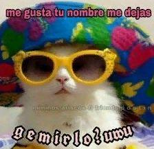 Memes Amor, Memes Estúpidos, Cute Memes, Stupid Memes, Jokes, Memes Lindos, Love Phrases, Spanish Memes, Pick Up Lines