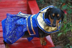 Cleopatra Blue comes in 5 sizes xxxsmall to by DownUnderDogDesigns, $80.00