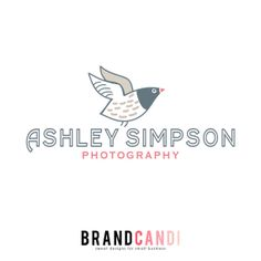 Pre Made Logo Design  Seagull Logo  Beach Logo by BrandCandi