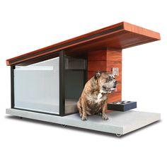 The Canine's Passive Solar Condominium - Hammacher Schlemmer