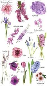 Resultado de imagem para flores lilas naturais casamento
