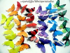 12 Small Assorted Set of Edible Butterflies Pre by DecoMachineLLC