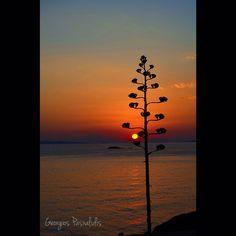 SARONIDA.....GREECE.....