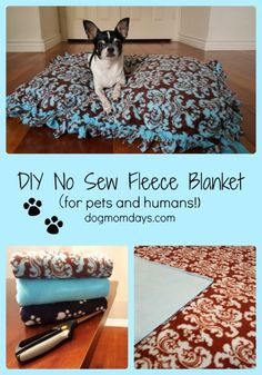 DIY No Sew Fleece Blanket For Pets and Humans! Learn to make this super easy DIY no sew fleece blanket! It's great for pets and humans, and it's easy to craft! Diy Dog Blankets, No Sew Fleece Blanket, Fleece Blankets, Dog Fleece, Diy Cat Bed, Costura Diy, Diy Kit, Dog Pillow Bed, Dog Crafts