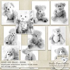 LIGHT AND SHADE : BEARS – MONOCHROME WATERCOLOUR CARDS  by Studio Dawn Inskip at Scrapbookgraphics  http://shop.scrapbookgraphics.com/Light-and-Shade-Bears-Monochrome-Watercolour-Cards.html