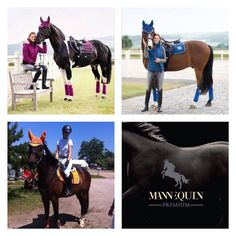 discover varieties of colors at mannEQUIn. Hv Polo, Horseback Riding, Equestrian, Horses, Photo And Video, Colors, Squares, Instagram Posts, Animals