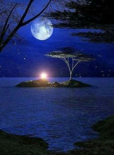 once in a blue moon Moon Moon, Moon Stars, Moon Rise, Blue Moon, Stars Night, Mystic Moon, Shoot The Moon, Moon Pictures, Nature Pictures
