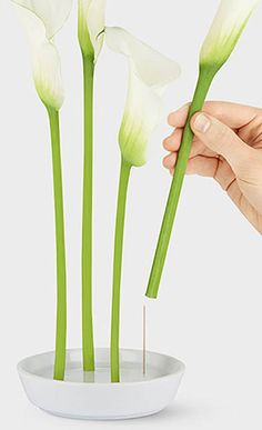 A simple ceramic stem vase dish - holds flower stems on single pins #product_design
