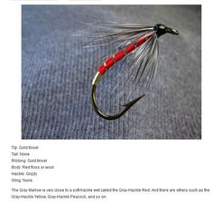 Guided Salmon Fishing in Cooper Landing - Jason's Guide Service Carp Fishing Rigs, Walleye Fishing, Fishing Knots, Salmon Fishing, Best Fishing, Fly Fishing, Fishing In The Bahamas, Bass Fishing Videos, Kenai River