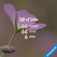 Gift of Gaia - Essential Oil Diffuser Blend