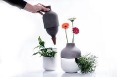 Bothles Collection Shows a Two Part Designer Vase